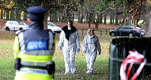 Phoenix Park body 'too badly burned to identify'